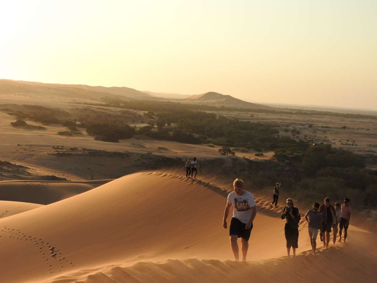 Gobabeb: the Heart of the Namib Desert